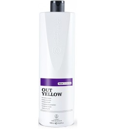 Champú AntiAmarillo Platinium Tech Light Irridiance 1000 ml.