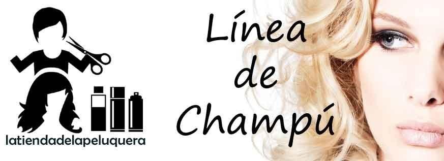 Línea de Champús